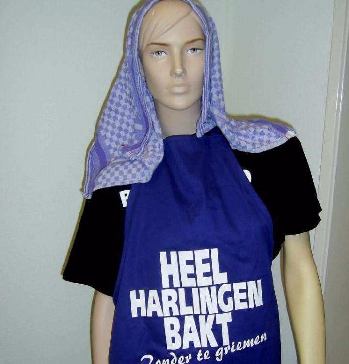 Schort Harlingen